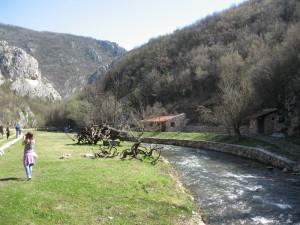 VODA GRZA PARACIN10