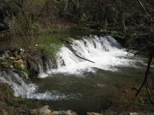 VODA GRZA PARACIN12